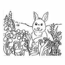 Rabbit Having Fun With Spring Flowers Day Printable To Color