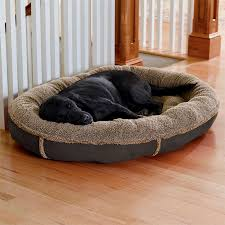 orvis dog bed covers dog beds gallery images and wallpapers
