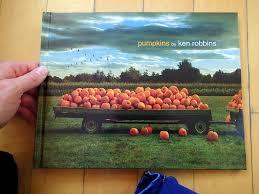 Pumpkin Patch Irvine University by Orange County