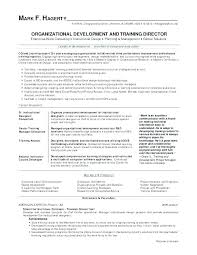 Resume Samples For Teachers Pdf Business Development Manager Job Examples Develop