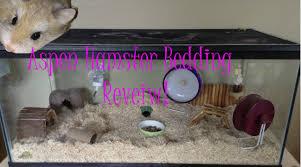 aspen hamster bedding review comparison youtube