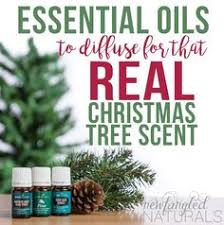 How To Get That Real Christmas Tree Scent With Essential Oils