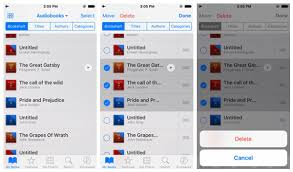 How to Quickly Find and Delete Audiobooks from iPhone