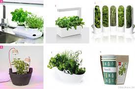 comment cultiver ses herbes aromatiques à la maison