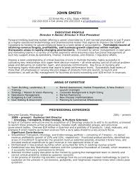 Mis Executive Resume Sample Pdf Samples Professional Templates For Teens