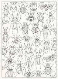 Moths Is A Print Taken Directly From One Of The Pages My Book Twenty Ways To Draw Tree This Limited Edition 100