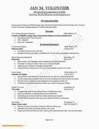 Objective Summary For Resume Awesome Examples Communication Beautiful