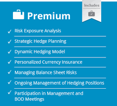 Dynamic Value Annual Financial Risk Ofakim Risk Management Derivatives Currency Exchange And Debt
