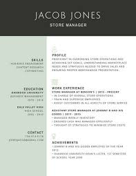 Professional Store Manager Resume