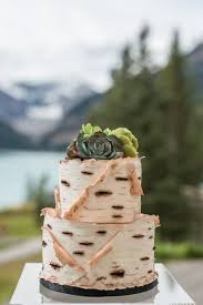 Unique Canadiana Style Nature Inspired Birch Wood Bark Wedding Cake With Succulents Photo