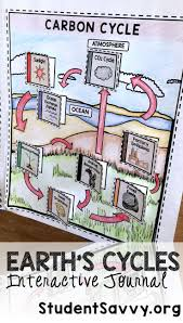 Define Carbon Sink Geography by Best 25 Carbon Cycle Ideas On Pinterest Photosynthesis Carbon
