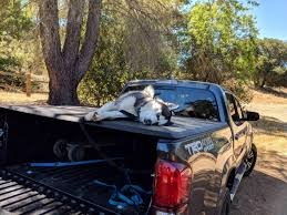 A Tired Husky Is A Happy Husky! : Husky Gmbuickchevroletford Trucksuvmud Grabbers 275 Inch Wide Black Siberian Husky License Plate For Car Truck Motorcycle Or Etsy Husky 618 In X 205 157 Alinum Compact Low Profile White A Stock Photo 24666209 Alamy Whbeater 2nd Row Floor Liner 072015 Jeep Collection Of At Homedepot Rhdecpotcom Truck Neighborhood The Green Greek Representative Group Lets 13 Guy Warrior Sand Tompouce6 Flickr Wheel Well Liners 2016 F150 Youtube Regarding For Mercedes Bevertail Recovery 1 Owner Lk900 817 814 813 Henley 8 Forklift Fork Lift Only 6000 Operating Hours