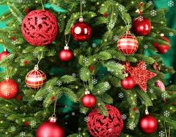 Your Christmas Tree Is Not Only A Fire Hazard But Can Also Make You Sick From Mold