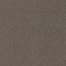 Par Rating Carpet by Home Decorators Collection San Rafael I S Color Taupe Whisper