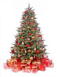 Christmas Tree Disposal Nyc by Getting The Right Tree This Christmas Rachael Ray