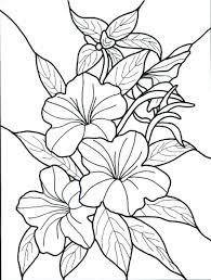 Full Image For Free Coloring Pages Adults Printable Hard Color Spring