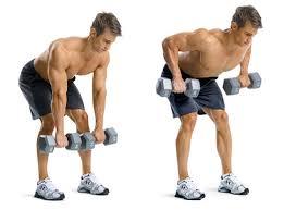 Pec Deck Exercise Alternative by Fitness Basics Beginner Upper Body Exercisesrivertea Blog