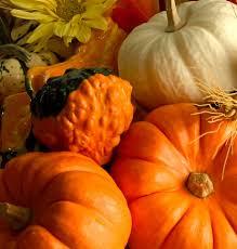 Pumpkin Patch Durham North Carolina by Mt Sylvan United Methodist Church Media U0026 Resources Pumpkin Patch
