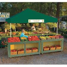 12X12 Pro Series Pop Up Canopy Green Shelterlogic