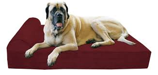 Stuft Dog Bed by Winsome Dog Bed Xlarge 84 Extra Large Dog Bed Uk Images About Memory Foam Jpg