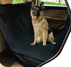 SUV Truck Vehicle Car Seat Cover Hammock Waterproof Anchored Dog Pet ... A Food Truck For Pets Is Coming To Boston Magazine Dogs Die Falling Off Pickup Trucks Trucking With A Dog What Drivers Should Know About Furry Pickups Pickup Truck Dog Rudy Photograph By Tara Cantore Blue Wall Art Bromi Design Pick Up Pal Cool Stuff Driving Behind The Steering Wheel Of Lorry Stock Debbis Front Porch Dawgz The Dangers In Beds 1800petmeds Cares Novel Four Bites Hc Thrifty Teachers
