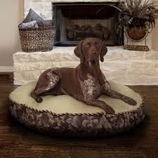 Kirkland Dog Beds by Costco Kirkland Signature Round Pet Bed Books Worth Reading