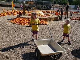 Half Moon Bay Pumpkin Patches 2015 by Little Hiccups Our Pumpkin Patch Visit 2013