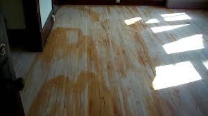 Restain Hardwood Floors Darker by Water Popping Hardwood Floors Maple Youtube