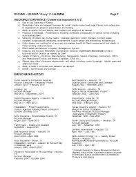 Sample Insurance Underwriter Resume Example Underwriters Samples Objective