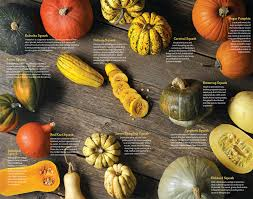 Types Of Pumpkins And Squash by Winter Squash 101 U2013 The Nutrition Grapevine