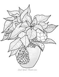 Christmas Poinsettia Coloring Page
