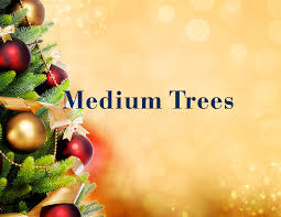 Christmas Tree Amazonca by Amazon Ca Holiday Décor Home U0026 Kitchen