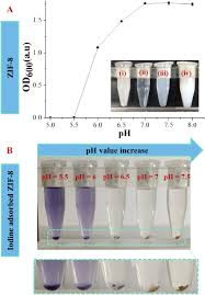 100 Ph Of 1 PH Effect On Disintegrating ZIF8 And Iodine Loaded ZIF8I