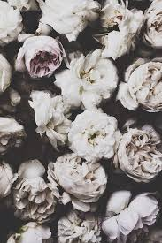 Black And White Vintage Backgrounds For Tumblr