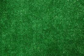 Dean Indoor Outdoor Artificial Grass Rug 9 x 12
