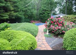 Manicured Backyard Ornamental Brick Path Flowers Stock Photo ... Bavaria Germany Grows Ingrown Shrub Shrubs Garden Smoke Bush Hosta Landscape Ideas Pinterest Evergreen Large Backyard With Shrubs And Fences Choosing The Best Garden Grey Stamped Concrete Patio Unique For Modern Design With And Bushes For Small Landscaping Most Beautiful Sherrys Place In My Backyard Trees Pictures Ideas Decors Privacy Fence Plants Drhouse Trimmed Tips To Trimming Large Beautiful Photos Photo To Select Decorating Bird Bath Fountain Lattice