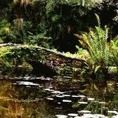McKee Botanical Garden 42 s & 21 Reviews Botanical