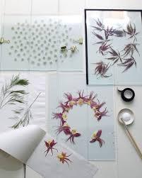 "21 best 압™"" pressed flower images on Pinterest"