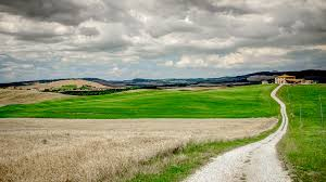 Grey And Green Tuscany