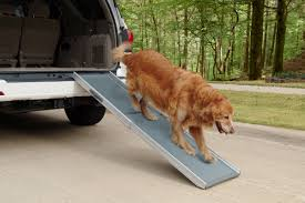 How To Choose The Best Car Dog Ramp 2018   Auto Express Extendable Dog Ramps 100kg Weight Limit Best For Car Or Suv 2018 Ramp Reviews Pet Gear 70 In L X 195 W 4 H Trifold Ramppg9300dr Champ Howto Guides Articles Tagged Ramps Page 2 Solvit Smart Junior Petco Youtube For Pickup Trucks Black Widow Alinum Extrawide How To Build A Dog Ramp Dirt Roads And Dogs Suvs Cars And Pro Rage Powersports 8 Ft Extra Wide Folding Live