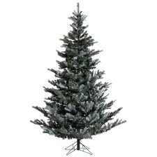 7ft Christmas Tree Asda choose the right christmas tree for your home scotsman food and