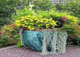 98 Best About Flower Pot Gardens Pinterest Garden Ideas