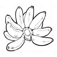 Dessin Banane Coloriage Graphicall Design