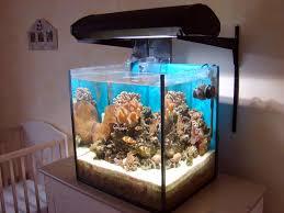 aquarium nano eau de mer aquarium marin nano decor aquarium recifal vrac it