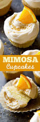 Pampered Chef Easy Accent Decorator Cupcakes by Best 25 Cake Boss Recipes Ideas Only On Pinterest Cake Boss