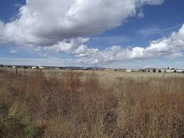 Stanly Lane Pumpkin Patch Napa 2015 by Real Estate For Sale Pumpkin Patch Road Moriarty Nm 87035