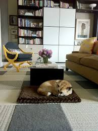 flor carpet squares for pet friendly design a great flooring