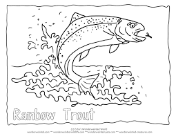 Rainbow Trout Picture To Color 5 Coloring Page With Outline Pictures Fish Splashing Out Of The Water