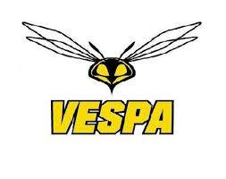 Vespa Ultra Concentrate The Healthy Runner
