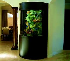 Tropical Fish Tank Interior Design Ideas - Best Home Design Ideas ... Creative Cheap Aquarium Decoration Ideas Home Design Planning Top Best Fish Tank Living Room Amazing Simple Of With In 30 Youtube Ding Table Renovation Beautiful Gallery Interior Feng Shui New Custom Bespoke Designer Tanks 40 2016 Emejing Good Coffee Tables For Making The Mural Wonderful Murals Walls Pics Photos